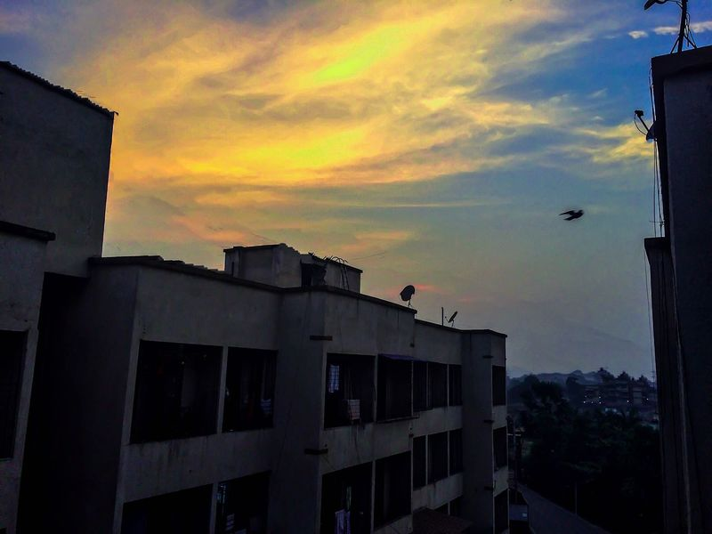 To infinity Sunset Architecture Building Exterior Built Structure Bird Sky Animal Themes Silhouette Outdoors Cloud - Sky No People Animals In The Wild Flying Nature City Day EyeEm Best Shots EyeEm Best Edits Neighborhood Map EyeEmNewHere EyeEm Gallery VSCO Panvel
