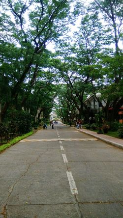Memory lane. Dlsud Animo Shades Of Green  Shades Of Nature Sweet Escape Beautiful Day