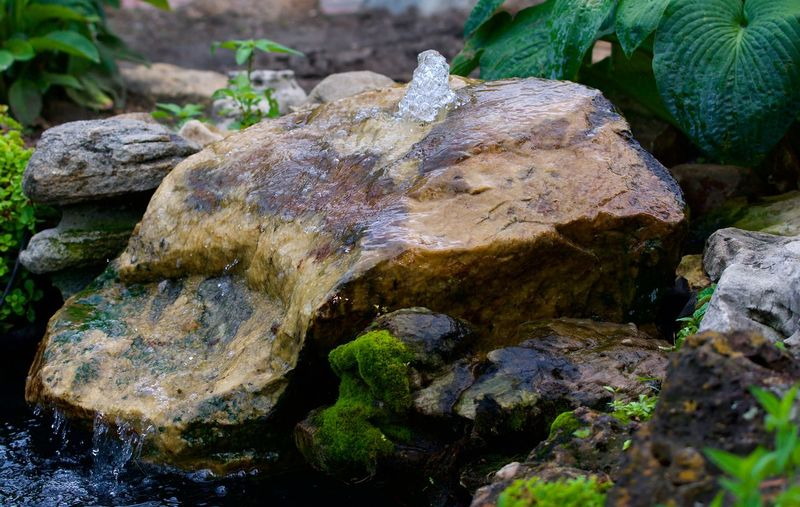 Close-up of rocks in water