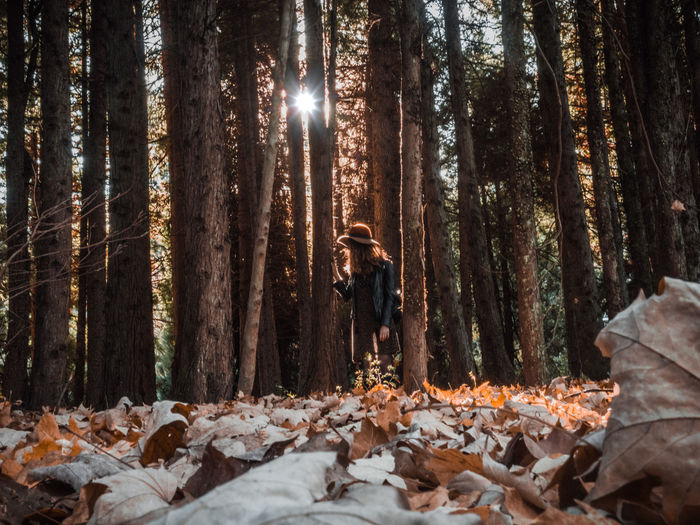 Autumn exploration EyeEmNewHere Autumn Beauty In Nature Change Forest Leaf Leaves Lifestyles Nature One Person Outdoors Plant Plant Part Tree Trunk Warm Clothing The Great Outdoors - 2018 EyeEm Awards The Creative - 2018 EyeEm Awards A New Beginning 50 Ways Of Seeing: Gratitude Capture Tomorrow