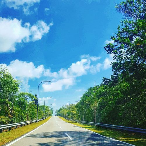 Road to nowhere... Simple perspective Samsung Galaxy S7 Edge Tree The Way Forward Car Nature Outdoors No People Cloud - Sky Road Traveling Home For The Holidays