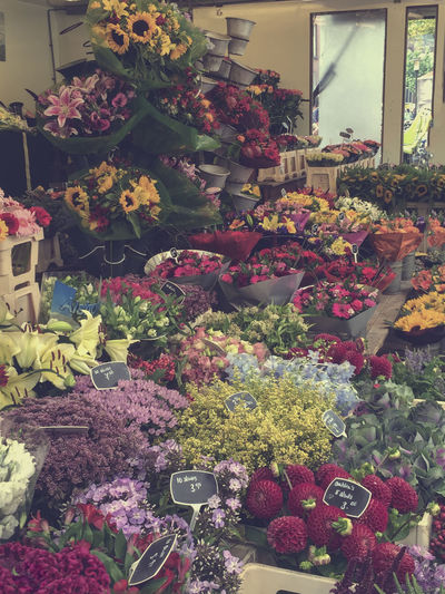 Flowers in flowershop #Why Window Shop, When You Own This. Abundance Arrangement Blooming Blossom Botany Choice First Eyeem Photo Flower Shop Freshness Green Hollandseluchten Netherlands Plant
