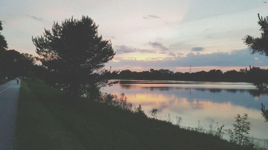 The Great Outdoors - 2016 EyeEm Awards Lake Arlington Arlington Heights Nature Photography Beautiful Nature Water Green Green Green!  EyeEm Best Shots Natureatyourdoorstep Perspectives On Nature Sunset Lake Life