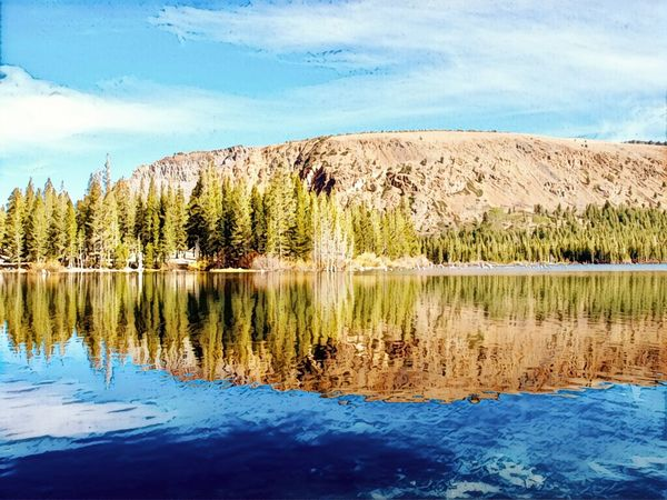 Eastern Sierras Mammoth Lakes, CA Lake Mary Water Tranquil Scene Plant Tranquility Beauty In Nature Tree Reflection Scenics - Nature Lake