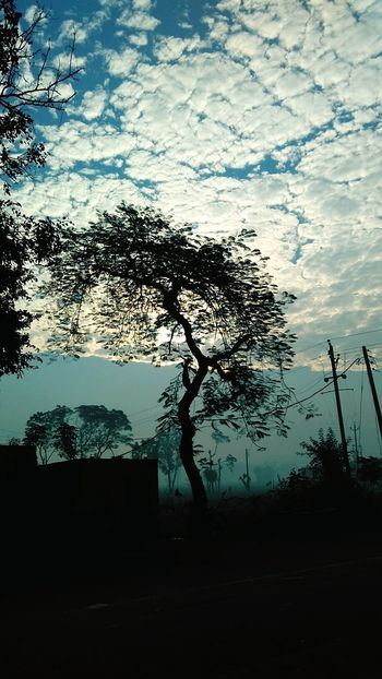 Tree Silhouette No People Shadow Outdoors Sky Rural Scene Nature Beauty In Nature Water Day Photography ClickedByMe Enjoying With Friends  Friends Silence Moment Tree Green Landscape Nature Beauty Of Nature Nature_collections  Nature Nature Lover Sunrise