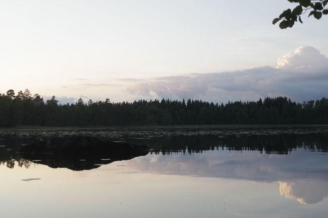 Finland Finnish Nature Nature Suomi Järvi Lake Maisema Summernight