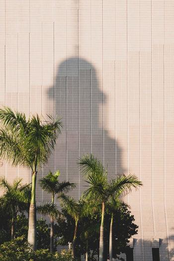 Shadows of clock tower