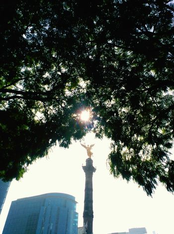 Ángel de la independencia Statue Sculpture Travel Destinations Architecture Sky City Silhouette Mexico City MéxicoD.F. Personal Perspective Movilephotography Art Is Everywhere Architecture Independence