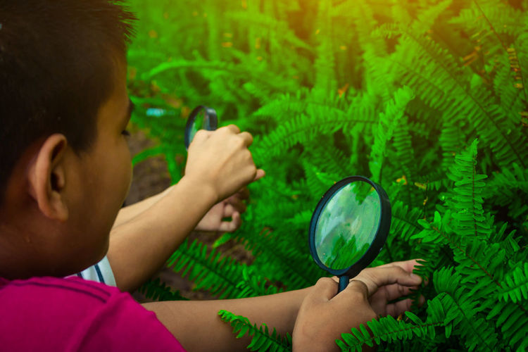 Close-Up Of Boy Holding Magnifying Glass Over Fern