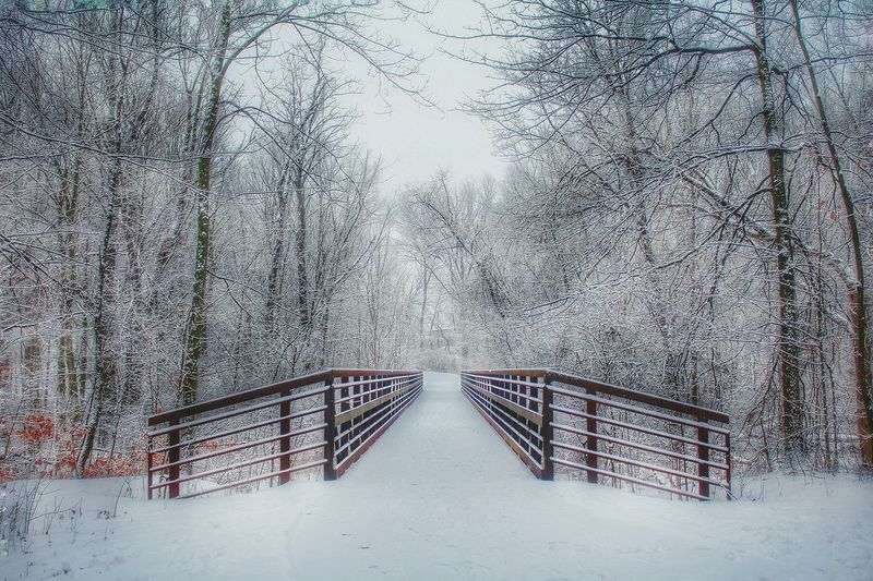 Winter Landscape Wintertime Landscape Snow Covered Winter Beautiful Nature Snow ❄ Winter Wonderland Winter Trees Naturelovers Outside Outdoor Pictures Nature Ohio Cold EyeEm Best Shots - Nature Branches And Snow February 2016 Winter 2016 Bridge Leading Lines Into The Distance