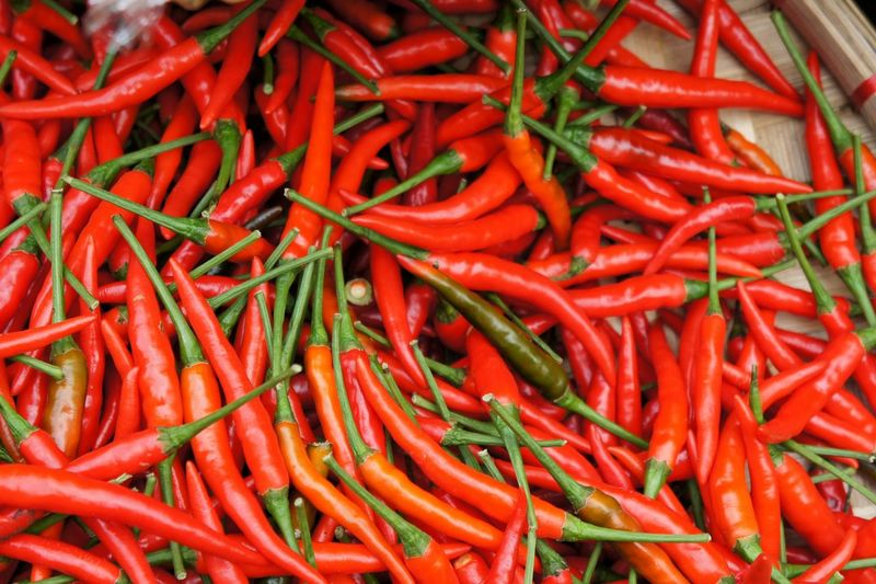 Close-up of red chilies