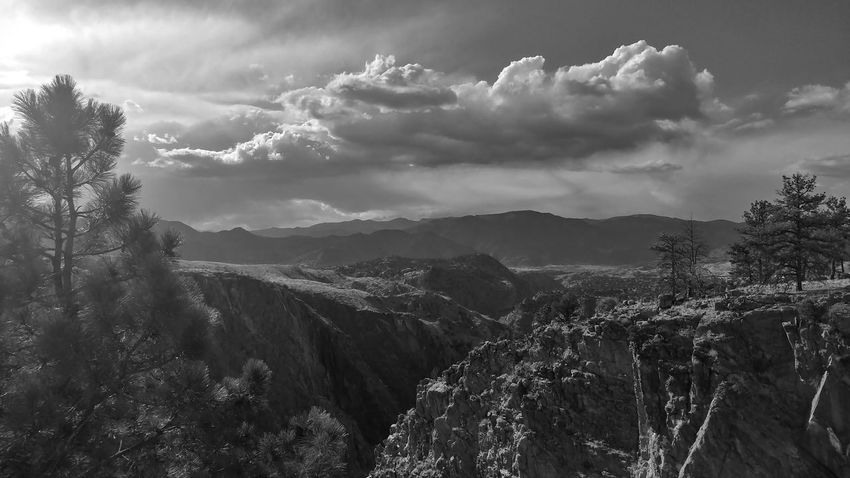Ansel Adams Inspired Tree Mountain Beauty Sky Landscape Cloud - Sky Dramatic Sky Pine Woodland Atmospheric Mood