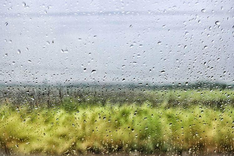 Water Backgrounds Full Frame Window Drop Wet Close-up Sky Rainy Season Glass RainDrop Rain Rainfall Water Drop