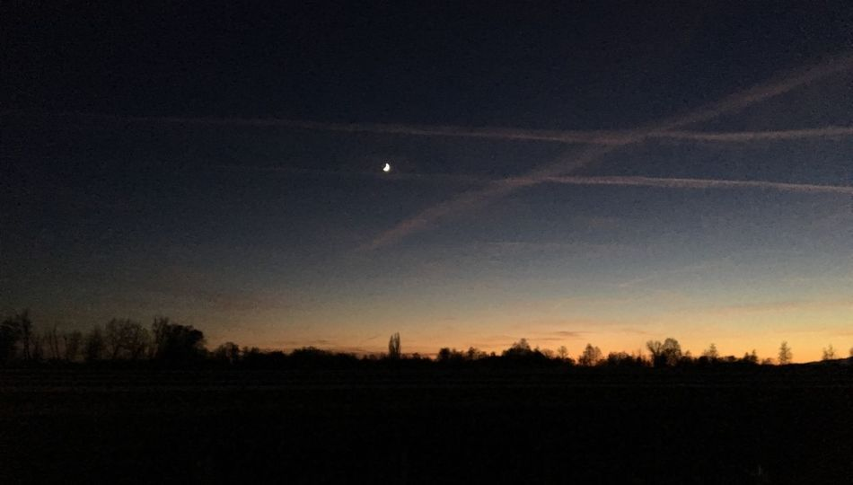 Moon Nature Vapor Trail Scenics Beauty In Nature Sky Tranquil Scene Silhouette Tranquility Sunset Tree Landscape No People Outdoors Night Half Moon Contrail Space Crescent Astronomy