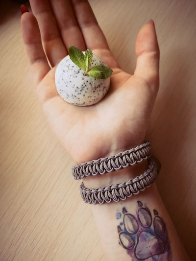 Cropped hand holding plant
