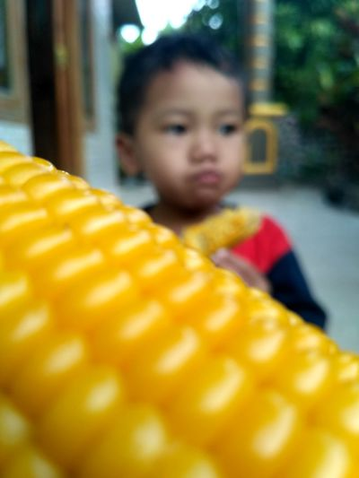 Childhood One Person Child One Boy Only Children Only Yellow Boys People Day Males  Outdoors Close-up Eating Healthy Eatingcorn Corn