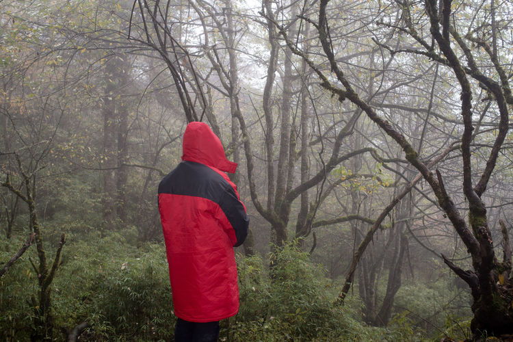 Man in red winter coat standing in front of jungle in fog. Freshness Hiking Nature Red Tranquility Travel Tree Trunks Trees Winter Coat Adventure Clothes Coat Foggy Forest Jungle Mist Outdoor People Portrait Rain Coat Selfie
