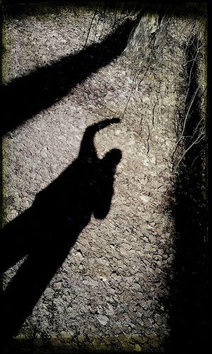 Licht Und Schatten Hello World Philosophenwald