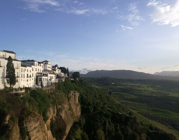 Ronda Spaın Ronda Bridge Bridge Andalucía Andalusia Tree View Agriculture No People Hill Sky Outdoors Landscape Rural Scene City Architecture Day Growth Nature