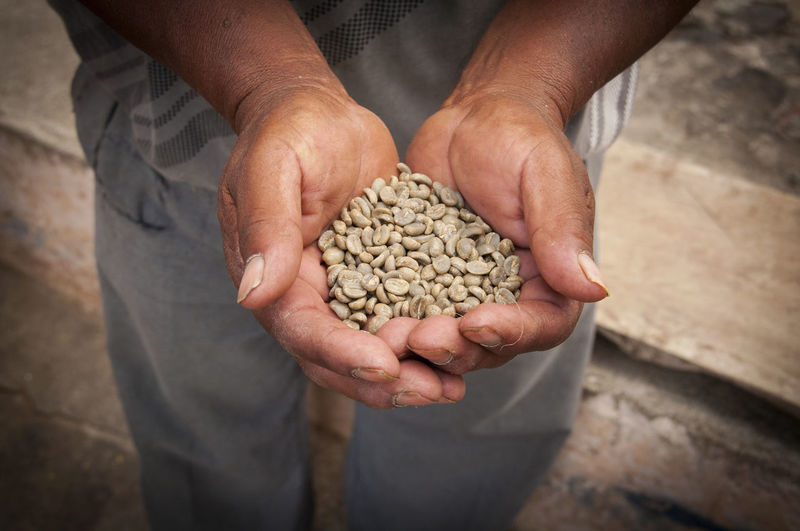 Midsection of man holding coffee beans