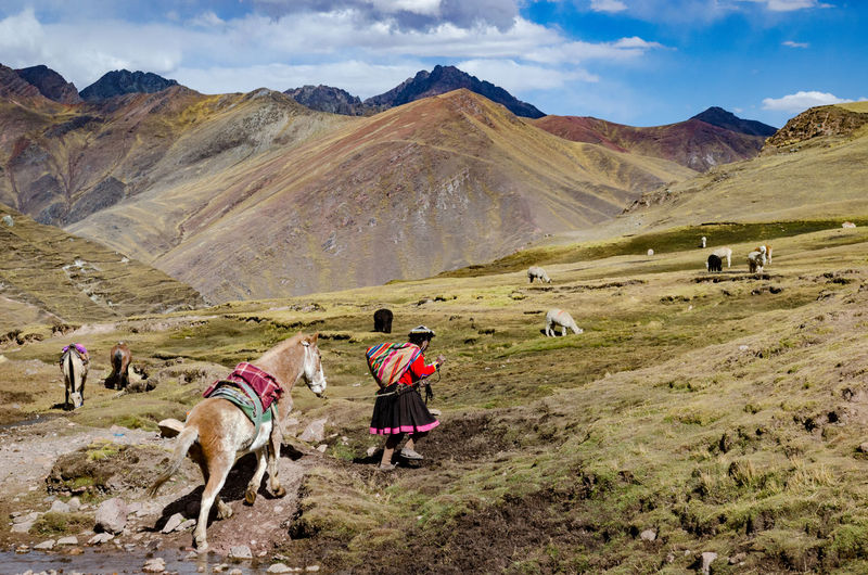 Side view of woman with horse walking on mountain against sky