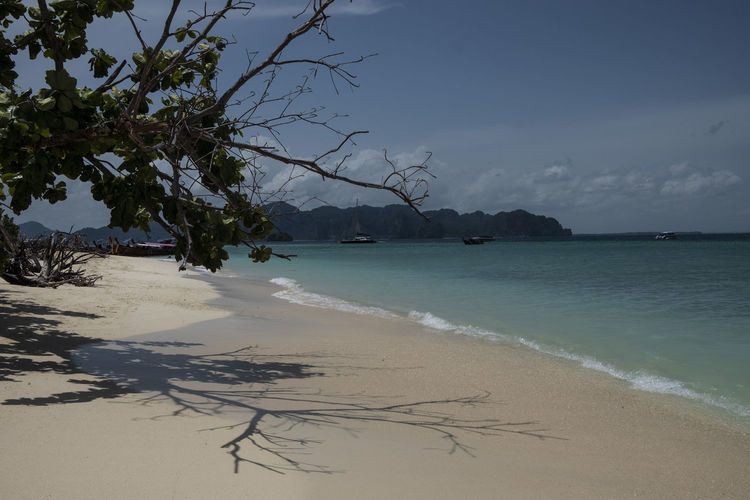 Beach DayOnTheBeach Krabi Thailand Beach Beauty In Nature Beutifuldestination Dayontheboat Horizon Island Nature No People Outdoors Sand Scenics - Nature Sea Sky Tranquil Scene Tranquility Travel Destinations Tree Tropical Climate Water