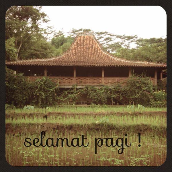 Javanese Joglo