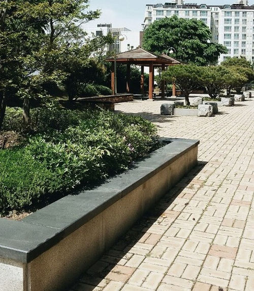 on the playground Architecture Building Exterior Built Structure Day Footpath Free Time Freedom Green Color Holiday Korea Outdoors Park Park Bench Playground Rest Sky South Korea Summer Sunshine Tree