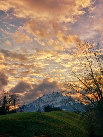 Drachenberg Schweiz Luzern Pilatus Mt. Pilatus Alps Mountain Nature Scenics Beauty In Nature Tranquil Scene Sunset Tranquility Sky Cloud - Sky Grass No People Landscape Cold Temperature Winter Outdoors Snow Tree