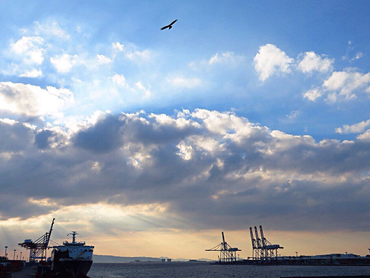 sky, cloud - sky, sea, nautical vessel, transportation, mode of transport, water, outdoors, nature, scenics, beauty in nature, day, no people, flying, horizon over water, harbor, bird, animal themes