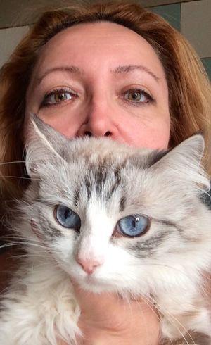 I and my cat мое голубоглазое счастье) That's Me мои кошки, питомник невских маскарадных невак на двине
