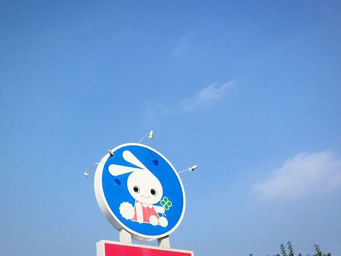 Japan Rabbit Sky
