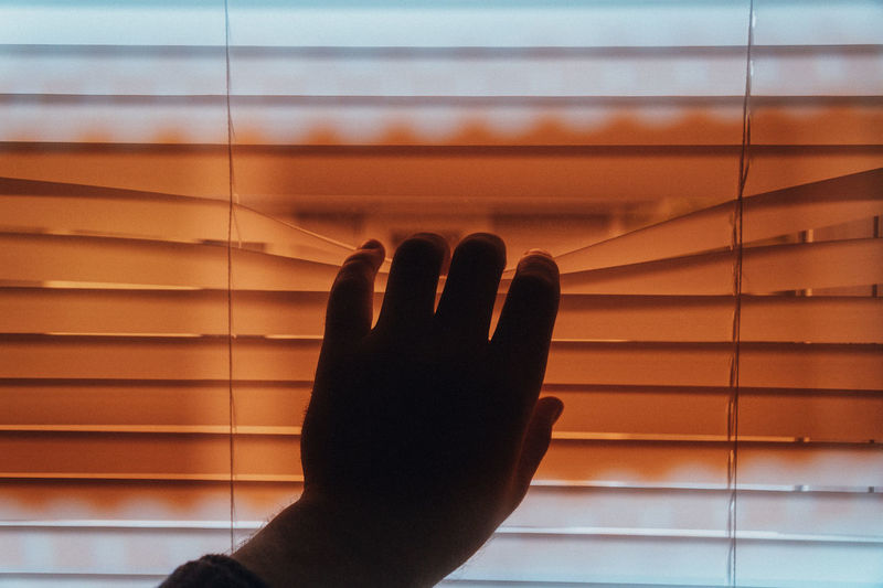 Close-up of human hand against window