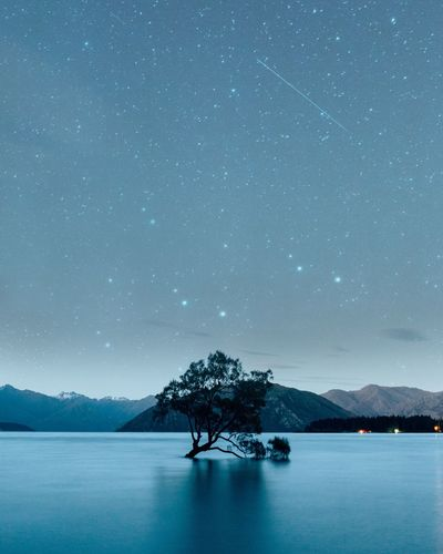 Summer nights at Lake Wanaka Star - Space Astronomy Night Scenics Nature Lake Landscape Space Beauty In Nature Tree Longexposure Shooting Stars Thatwanakatree The Great Outdoors - 2018 EyeEm Awards