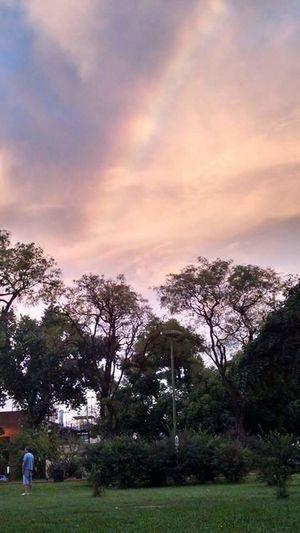 Rainbow Luganocity