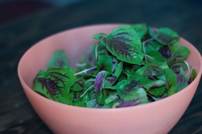 Raw Purple Green Organic Baby Spinach in a Bowl Eating Cooking Salad Baby Eat Eating Healthy Vegetables Vegetarian Homemade Raw Fresh Preparation  Vegetarian Food Home Cooking Freshness Bowl Vegetable Fresh And Clean Spinach Cheflife Raw Food Eat Raw Eatclean Raw Photography Food And Drink Food Wellbeing Healthy Eating Close-up Green Color Still Life Indoors  Ready-to-eat No People Leaf Focus On Foreground Plant Part Selective Focus Table Serving Size Nature Herb Garnish Leaves Crockery