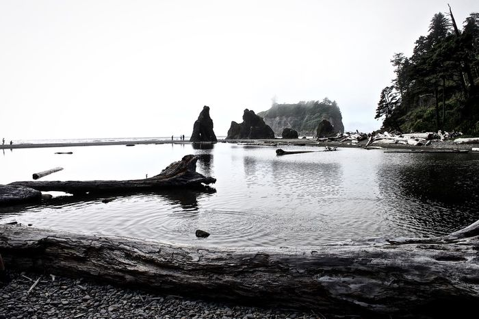 Beauty In Nature Calm Idyllic Nature No People Olympic National Park Olympicnationalpark Outdoors Reflection Ruby Beach Scenics Standing Water Tranquil Scene Tranquility Water Wild Nature Magic
