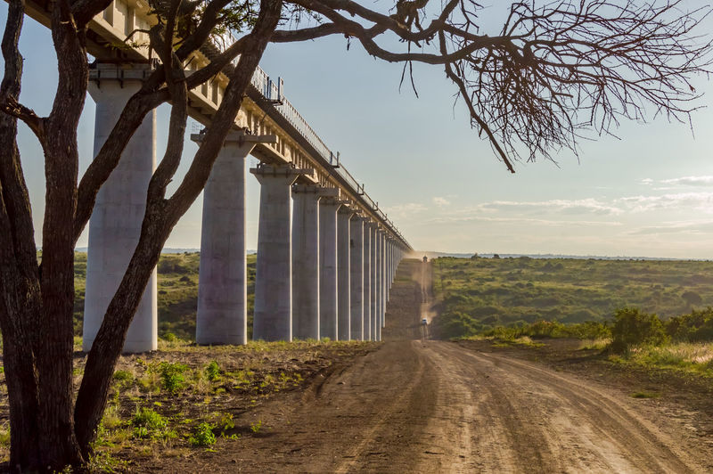 Tree Sky Plant Nature Road Architecture Transportation No People Built Structure The Way Forward Day Direction Landscape Land Environment Outdoors Connection Cloud - Sky Dirt Road Growth Railroad Track Rail Transportation Savannah Africa Nairobi National Park