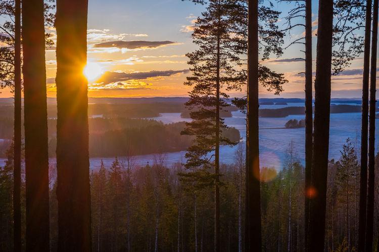 Colour Of Life Landscape_photography Landscape_Collection Sky Sun_collection, Sky_collection, Cloudporn, Skyporn Sunset Hello World Sunset #sun #clouds #skylovers #sky #nature #beautifulinnature #naturalbeauty #photography #landscape Finland Nature Beauty In Nature