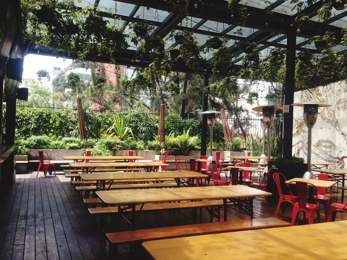 The Architect - 2017 EyeEm Awards Chair Table Tree Absence Empty Restaurant Wood - Material Day Indoors  Furniture No People Seat EyeEmNewHere Cdmx Mercado Roma Terrace Rooftop Roof Garden