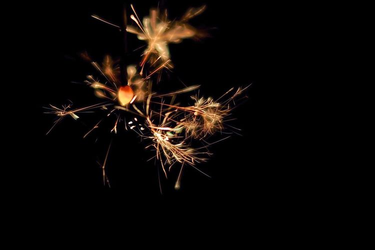 Firework - Man Made Object Celebration Firework Display Exploding Sparks Arts Culture And Entertainment Night Glowing Long Exposure Event Sparkler Motion No People Illuminated Low Angle View Celebration Event Blurred Motion Black Background Diwali Firework EyeEmNewHere
