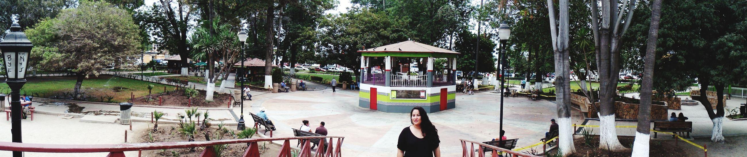 Enjoying The Sun Mexico Y Su Naturaleza Mexicolors Ensenada