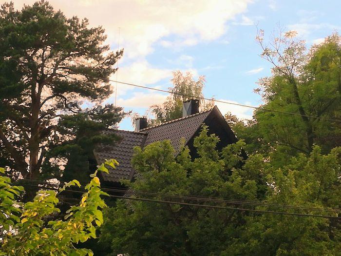 'Hidden Home, Sort Of..' Tree Nature Sky Outdoors Growth Day No People Summer Days Home Oslo Streets Afternoon Light URBex Oslo Urban Oslo✌ 2017 BeautifulUrbex Eyeem Weather Is Perfect Summer Trees Season  KJ✨