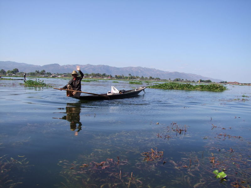 Traditional Inle Lake Fisherman Waving Blue Sky Composition Fisherman Full Length Inle Lake Lake Mountain Range Myanmar Narrow Boat Nautical Vessel Occupation One Man Only One Person Outdoor Photography Reeds In Water Reflections In The Water Ripples In The Water Shan State Tourism Traditional Fishing Traditional Fishing Boat Tranquility Water Waving Hello Working