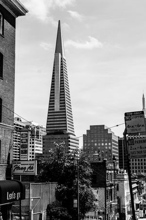 Skyscraper City Building Exterior Architecture Built Structure Tall - High Modern Office Building Tower Travel Destinations Urban Skyline Financial District  Capital Cities  San Francisco California Transamerica Pyramid Transamerica Pyramid Building