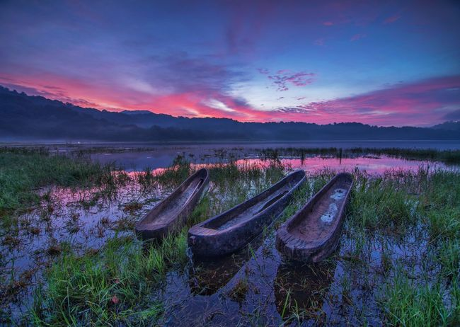 Sunrise of Bali Sunrise Sunrise_Collection Boat Bali Bali, Indonesia Balinese Balinese Boat Wooden Wooden Boat Three Boats Valley Lake Landscape_photography Landscape Tamblingan Lake Tamblingan Reflection Water Waterscape Grass Floating On Water Floating Tree Mountain Agriculture Rural Scene Springtime Multi Colored Pink Color Galaxy