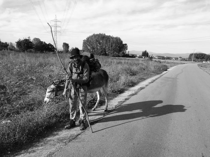 Camino De Santiago Donkey HuaweiP9 Huaweiphotography Monochrome Monochrome Photography Oo People Pilgrim Travel First Eyeem Photo