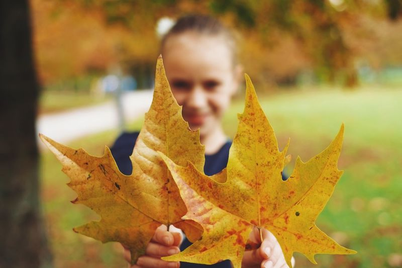 Portrait Of Smiling Girl Holding Autumn Leaves