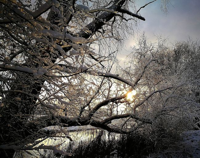 Winter came to Finland Beautiful Finland Beautiful Nature Winter Finland Wintertime Landscape