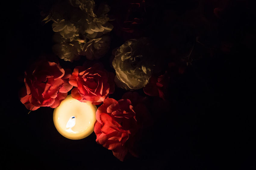 Floating candle - wedding decoration at night Black Background Blossom Burning Candle Celebration Close-up Dark Darkness Decoration Directly Above Flame Floating Candle Floating On Water Flower Flower Head High Angle View Illuminated Lighting Equipment Nature Night Pink Color Red Standing Water Tea Light Wedding